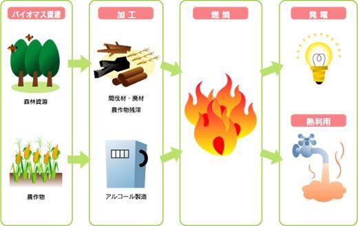 島根県:バイオマス(トップ / 環境・県土づくり / エネルギー ...